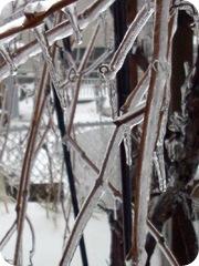 ice2 (7)